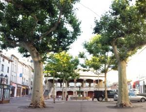 Market Hall, Castelnaudary, France